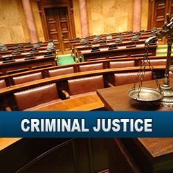 Death Penalty Issues - Criminal Justice
